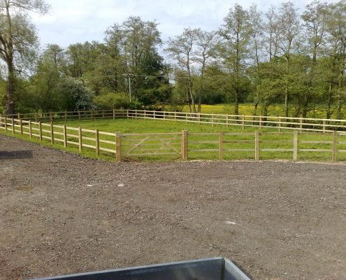 Post and three rail fencing with field gate.