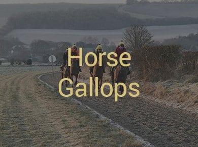 Horse Gallops Gloucestershire