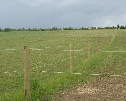 Electric fencing for horse paddocks